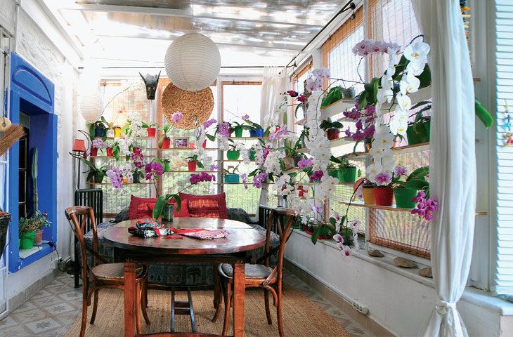 mutlu-orkideler-cenneti