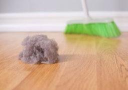 evdeki mikroplar