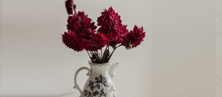 kağıttan yıldız çiçeği