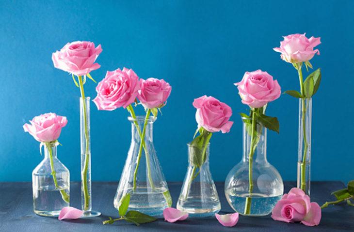 vazodaki-çiçekler