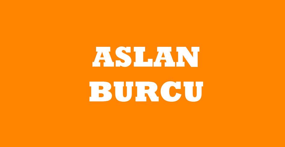 ASLAN BURCU VE RENGİ