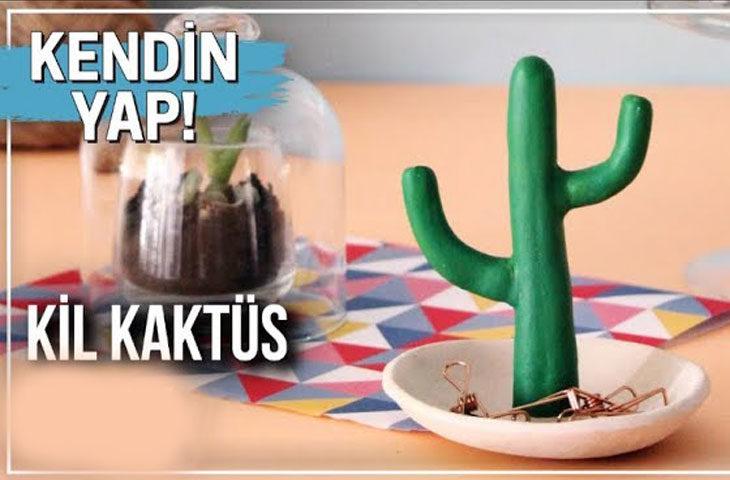 kil-kaktüs-tabak