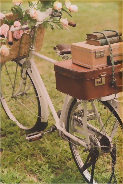 Bisiklet Dekorasyonu Ve Bisikletin En Dekoratif Halleri Evim