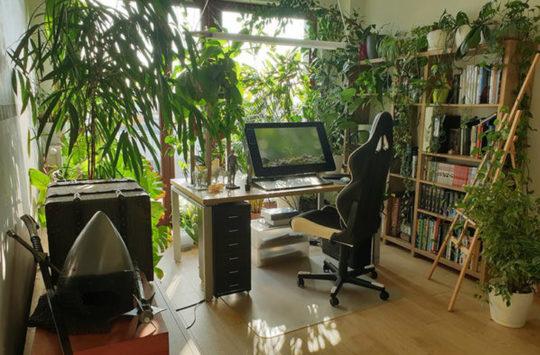 çalışma odası düzeni