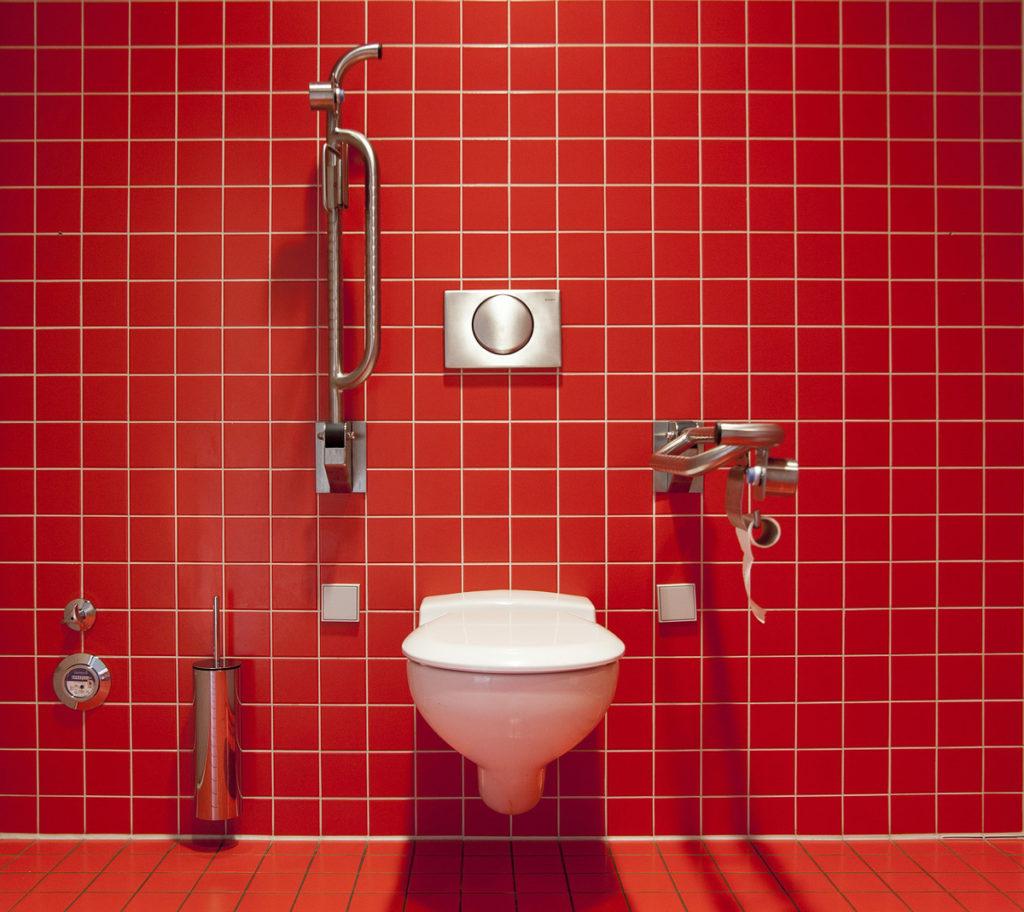 Tuvalet fırçası temizliği