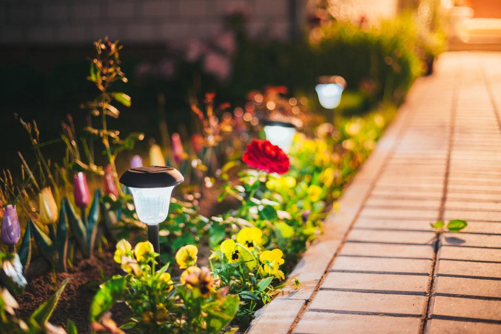 Bahçe dekorasyonu ve aydınlatma