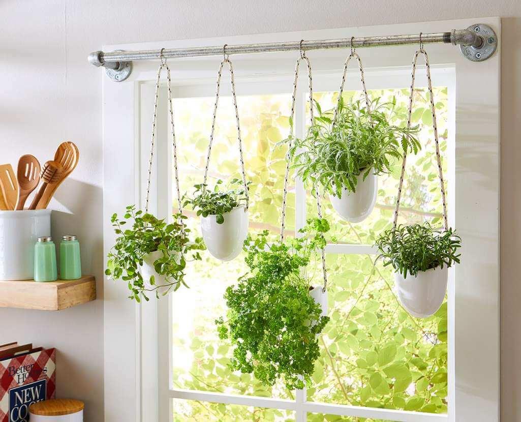 Bitkileri perde çubuğu ile asın