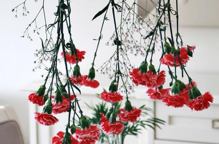 sarkıt-çiçeklik