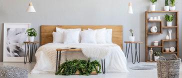 yatak-odasında-yetişen bitkiler