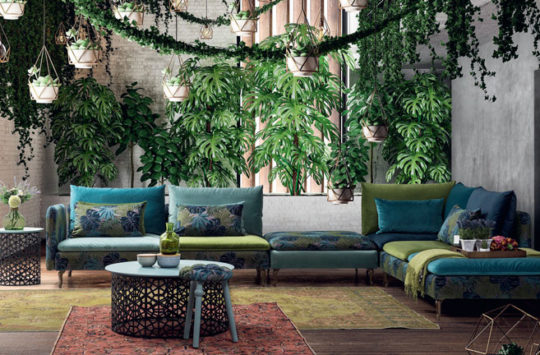 tropikal-ev-dekorasyonu