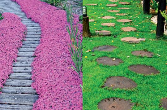bahçe-yolu-adım-taşları