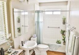 banyoda-yetiştirebileceğiniz-bitkiler