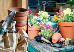 eylül-ayı-bahçe-hazırlıkları