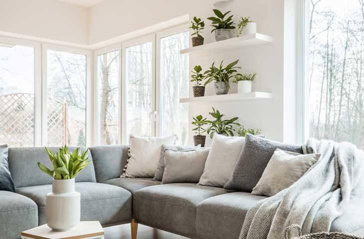 bitkilerin kış bakımı evde bitkiler