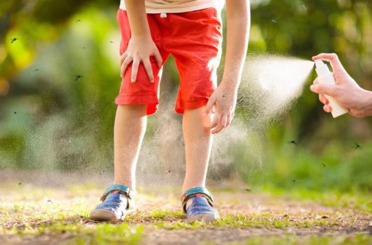 doğal sivrisinek kovucu
