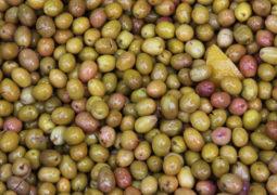 evde yeşil-zeytin-nasıl-yapılır